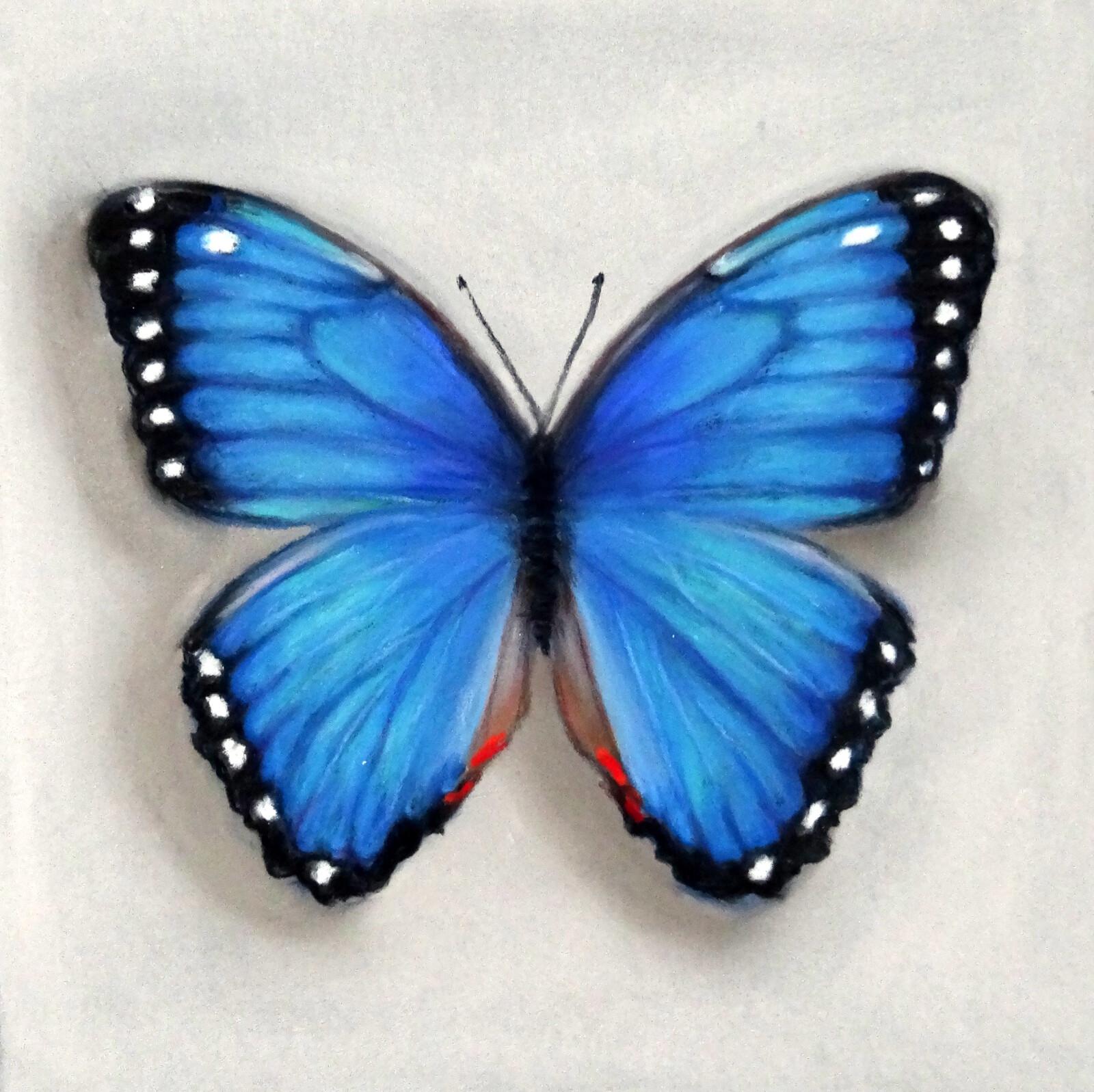 Бабочка в школу